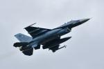 ワイエスさんが、築城基地で撮影した航空自衛隊 F-2Aの航空フォト(写真)