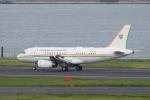 かずまっくすさんが、羽田空港で撮影したコートジボワール政府 A319-133X CJの航空フォト(写真)