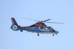 kumagorouさんが、仙台空港で撮影した川崎市消防航空隊 AS365N3 Dauphin 2の航空フォト(写真)