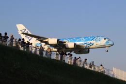 多楽さんが、成田国際空港で撮影した全日空 A380-841の航空フォト(飛行機 写真・画像)