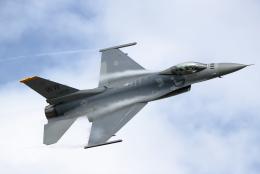 totsu19さんが、浜松基地で撮影したアメリカ空軍 F-16CM-50-CF Fighting Falconの航空フォト(写真)