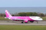 kenzy201さんが、新潟空港で撮影したピーチ A320-214の航空フォト(写真)