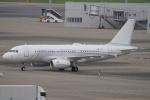 SFJ_capさんが、羽田空港で撮影したノマド・アヴィエーション A319-133X CJの航空フォト(写真)