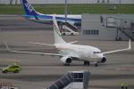 SFJ_capさんが、羽田空港で撮影したニジェール政府 737-75U BBJの航空フォト(写真)