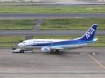 ぽん太さんが、羽田空港で撮影した全日空 737-54Kの航空フォト(写真)