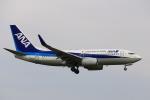 Zakiyamaさんが、熊本空港で撮影した全日空 737-781の航空フォト(写真)
