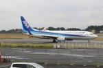 EosR2さんが、鹿児島空港で撮影した全日空 737-881の航空フォト(写真)