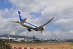 NH642さんが、台北松山空港で撮影した全日空 787-8 Dreamlinerの航空フォト(写真)