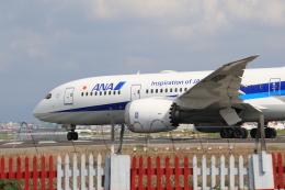 NH642さんが、台北松山空港で撮影した全日空 787-8 Dreamlinerの航空フォト(飛行機 写真・画像)