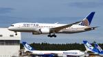 FlyingMonkeyさんが、成田国際空港で撮影したユナイテッド航空 787-8 Dreamlinerの航空フォト(写真)