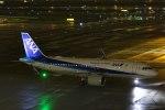 Mochi7D2さんが、羽田空港で撮影した全日空 A320-271Nの航空フォト(写真)