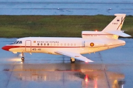 Wings Flapさんが、中部国際空港で撮影したスペイン空軍 Falcon 900の航空フォト(飛行機 写真・画像)