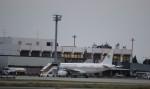 flyflygoさんが、熊本空港で撮影したコートジボワール政府 A319-133X CJの航空フォト(写真)