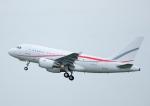 じーく。さんが、羽田空港で撮影したグローバル・ジェット・ルクセンブルク A318-112 CJ Eliteの航空フォト(飛行機 写真・画像)