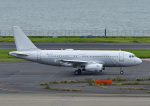 じーく。さんが、羽田空港で撮影したノマド・アヴィエーション A319-133X CJの航空フォト(飛行機 写真・画像)