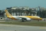matsuさんが、シンガポール・チャンギ国際空港で撮影したスクート 787-8 Dreamlinerの航空フォト(写真)