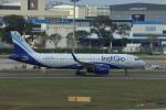 matsuさんが、シンガポール・チャンギ国際空港で撮影したインディゴ A320-271Nの航空フォト(写真)