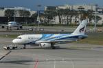 matsuさんが、シンガポール・チャンギ国際空港で撮影したバンコクエアウェイズ A319-131の航空フォト(飛行機 写真・画像)