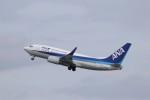 KAZFLYERさんが、羽田空港で撮影した全日空 737-781の航空フォト(飛行機 写真・画像)