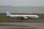 sukhoiさんが、羽田空港で撮影したAIR DO 767-381の航空フォト(写真)