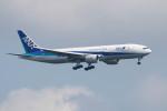 Koenig117さんが、新千歳空港で撮影した全日空 777-281の航空フォト(写真)