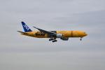 beimax55さんが、羽田空港で撮影した全日空 777-281/ERの航空フォト(写真)