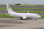 yabyanさんが、羽田空港で撮影したアラブ・ウイングス 737-7GJ BBJの航空フォト(写真)