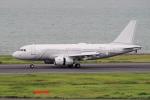 yabyanさんが、羽田空港で撮影したノマド・アヴィエーション A319-133X CJの航空フォト(写真)