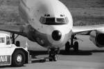 ヒロリンさんが、小松空港で撮影した全日空 737-281/Advの航空フォト(写真)