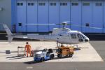 A-Chanさんが、ホンダエアポートで撮影した本田航空 AS350B Ecureuilの航空フォト(飛行機 写真・画像)