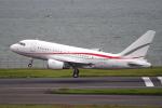 yabyanさんが、羽田空港で撮影したグローバル・ジェット・ルクセンブルク A318-112 CJ Eliteの航空フォト(飛行機 写真・画像)