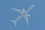 kuro2059さんが、中部国際空港で撮影した全日空 787-9の航空フォト(写真)