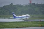 長崎空港 - Nagasaki Airport [NGS/RJFU]で撮影されたエアーネクスト - Air Next [7A/NXA]の航空機写真