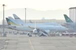 Cherry blossoms さんが、関西国際空港で撮影したカザフスタン政府 A330-243の航空フォト(写真)