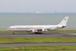 たまさんが、羽田空港で撮影したドイツ空軍 A340-313Xの航空フォト(写真)