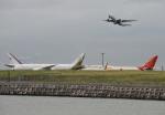 IL-18さんが、羽田空港で撮影したブルネイ政府 787-8 Dreamlinerの航空フォト(写真)