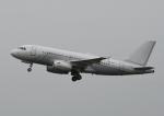 チャーリーマイクさんが、羽田空港で撮影したノマド・アヴィエーション A319-133X CJの航空フォト(写真)
