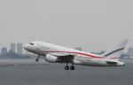 チャーリーマイクさんが、羽田空港で撮影したグローバル・ジェット・ルクセンブルク A318-112 CJ Eliteの航空フォト(写真)