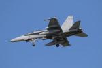wingace752さんが、三沢飛行場で撮影したアメリカ海兵隊 F/A-18D Hornetの航空フォト(写真)