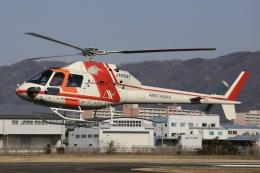 Hii0802さんが、八尾空港で撮影した朝日航洋 AS355F Ecureuil 2の航空フォト(写真)