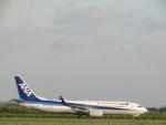 ノリださんが、宮古空港で撮影した全日空 737-881の航空フォト(写真)