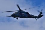 フォト太郎さんが、浜松基地で撮影した航空自衛隊 UH-60Jの航空フォト(写真)