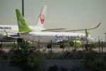 レドームさんが、羽田空港で撮影したソラシド エア 737-881の航空フォト(写真)