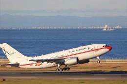 ゆなりあさんが、中部国際空港で撮影したスペイン空軍 A310-304の航空フォト(飛行機 写真・画像)