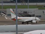 Rsaさんが、羽田空港で撮影したニジェール政府 737-75U BBJの航空フォト(写真)