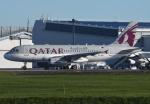 tassさんが、成田国際空港で撮影したカタールアミリフライト A319-133X CJの航空フォト(飛行機 写真・画像)