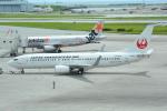 LEGACY-747さんが、那覇空港で撮影した日本トランスオーシャン航空 737-8Q3の航空フォト(写真)