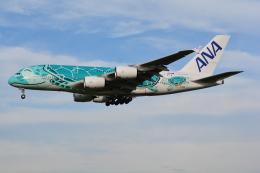 LEGACY-747さんが、成田国際空港で撮影した全日空 A380-841の航空フォト(写真)