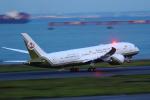 AkilaYさんが、羽田空港で撮影したブルネイ政府 787-8 Dreamlinerの航空フォト(写真)