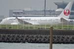 レドームさんが、羽田空港で撮影した日本航空 787-8 Dreamlinerの航空フォト(写真)